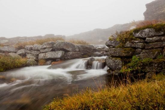 Foggy flow