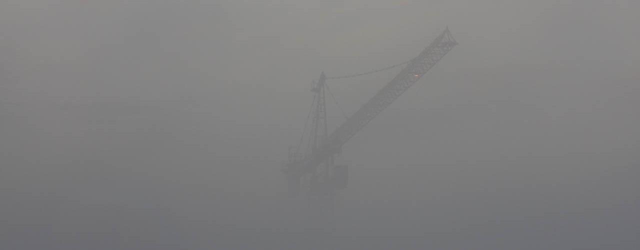 Crane in the mist