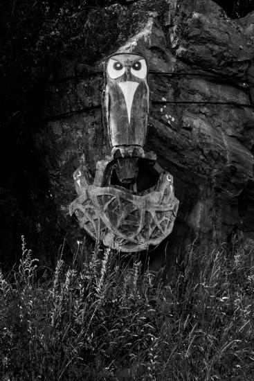 Hvitsten Owl