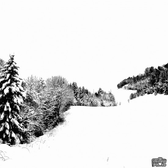 Black-and-white-in-the-snow_thumb.jpeg